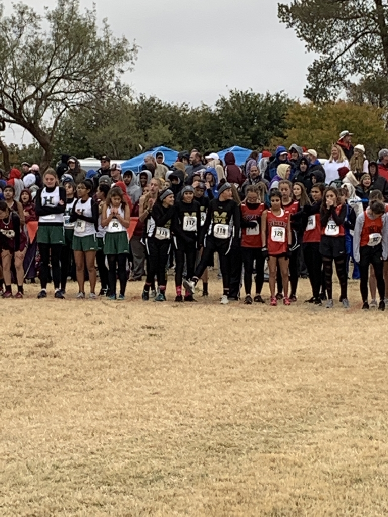 Girls Cross Country about to start